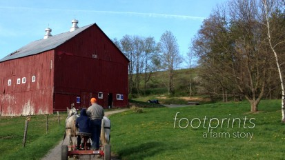 Footprints | A Farm Story